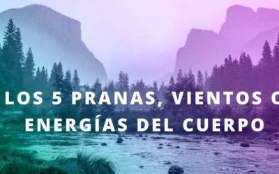 Los 5 pranas, Vayus , vientos o energías del cuerpo