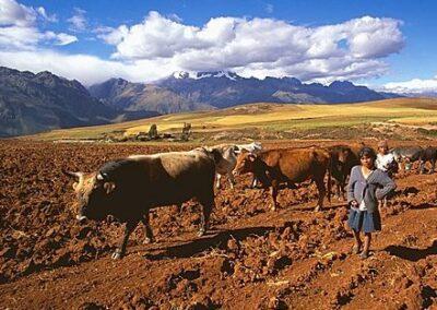 Paisaje de Perú